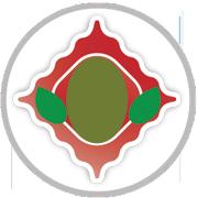 Pomodorino, Basilico e Olive - L'Agnolotto Tortona