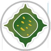 Spinacino Mandorle e Pesto al basilico - L'Agnolotto Tortona
